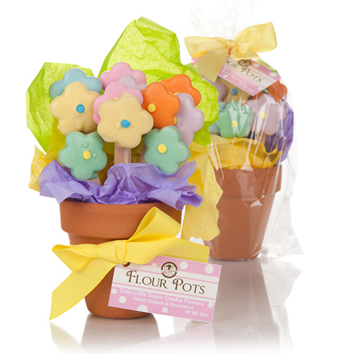 Mother's Day Flower Pot of Edible cookies